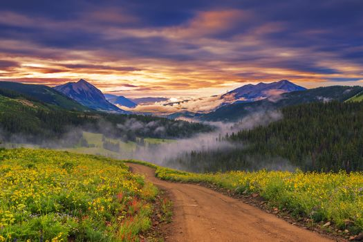view, sky, meadow, flowers, sunset, mountains, nature, landscape