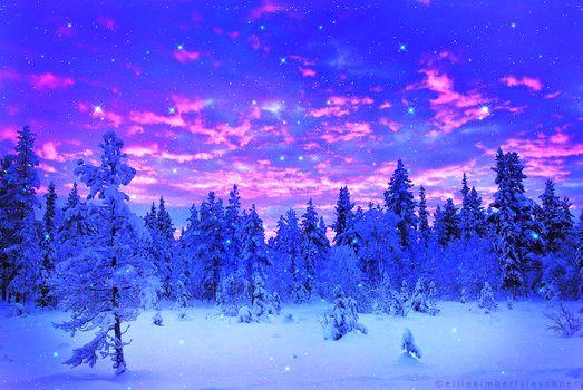 winter, trees, snow