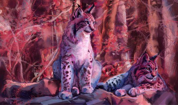 lynx, рысь, art