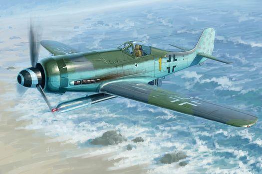 Art, plane, Luftwaffe, Germany, Focke-Wulf FW190D-12 R14