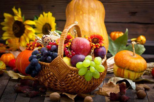 fruit, BERRY, vegetables, Flowers, basket, pumpkin, grapes, apple, nuts, Sunflowers, foliage, harvest, still life