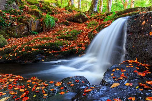 autumn, waterfall, trees, stones, nature