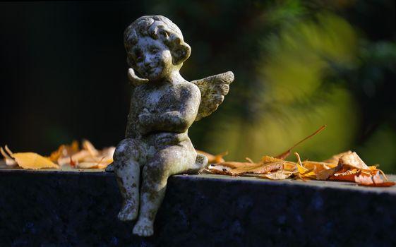 angel, sculpture, foliage, autumn