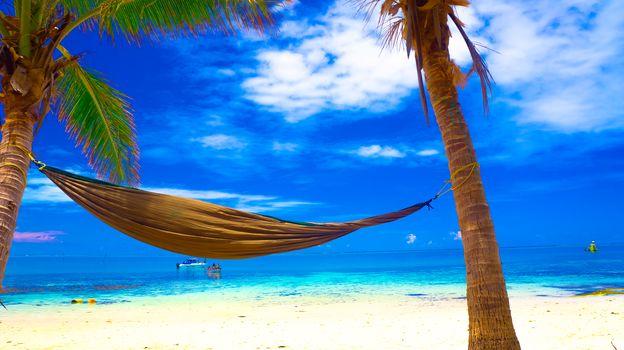 Fiji Islands, in South Pacific, landscape
