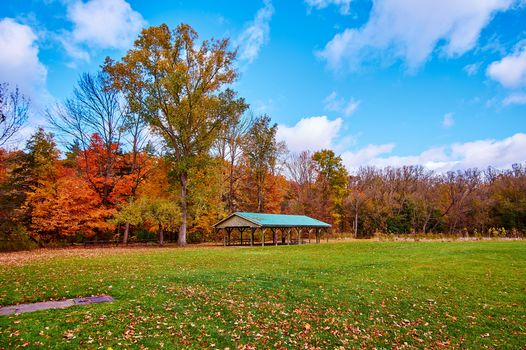 autumn, Lowville Park Burlington, Canada, autumn, field, arbor, trees, landscape