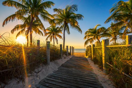 Florida, sea, beach, sunset, sea, Palms, wood flooring, road, shore, landscape