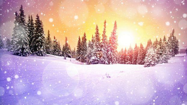 sunset, winter, snow, trees, drifts, landscape