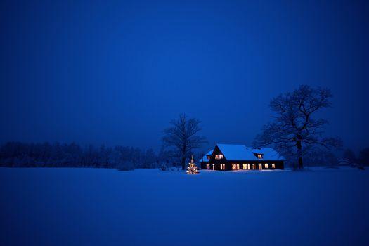 night, winter, snow, drifts, cabin, Christmas tree, New Year