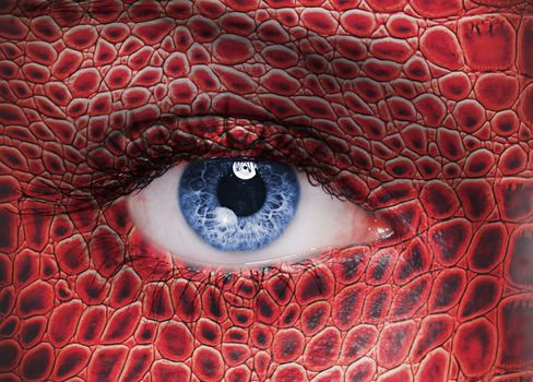 eye, eyes, human, man, view