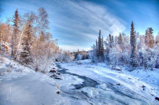 winter, river, snow, trees, landscape