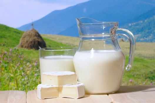 cheese, food, Food, purveyance, Food, protein, delicious, milk
