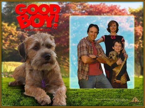 Лохматый спецназ, Good Boy!, фильм, кино
