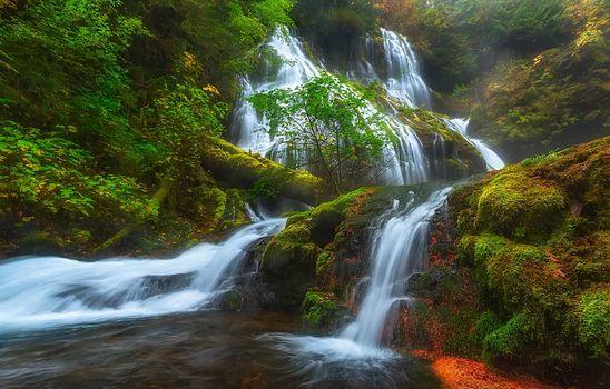 Panther Creek Falls, Columbia River Gorge, Skamania, Washington, Columbia River Gorge, Skamania County, Washington, waterfall, cascade, forest, moss