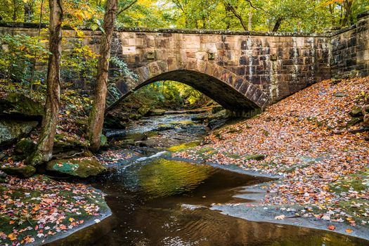 autumn, small river, bridge, trees, nature