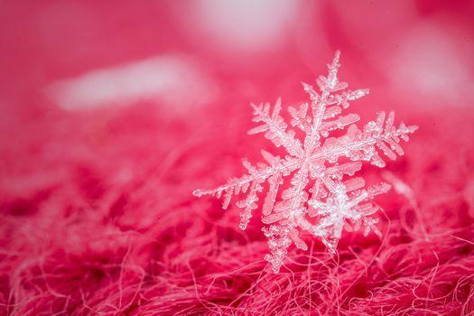 снежинка, макро, красный