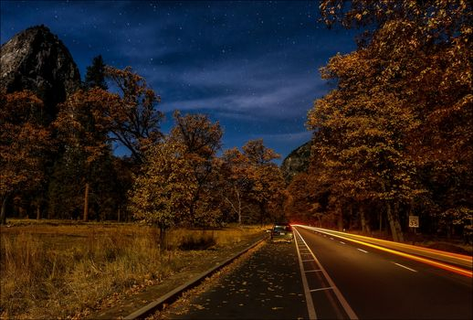 night, road, forest, trees, autumn, landscape