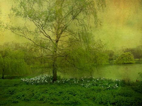 lake, glade, trees