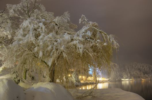 winter, snow, trees, river, Lake Bled, landscape