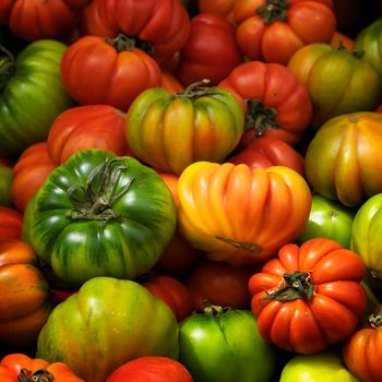 tomatoes, Tomatoes, vegetables