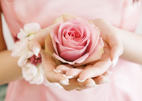 Flowers, flower, rose, Roses, hands, PALM, PINK