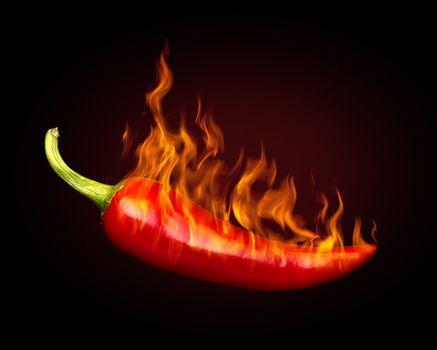 перец, красный, еда, чили, жгучий, огонь