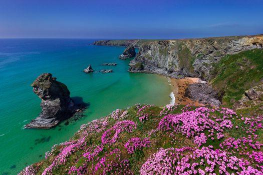 Bedruthan Steps, Cornwall, England, Celtic Sea, Cornwall, England, The Celtic Sea, rock, coast, sea, flowers, armory seaworthy