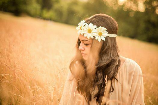 girl, meadow, chamomile, summer, mood
