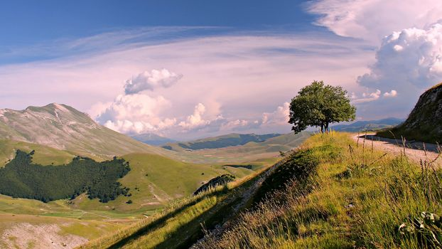 the mountains, hills, clouds, tree, summer, road, slope