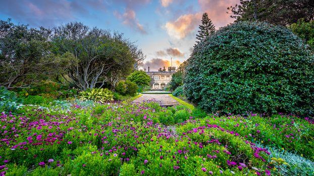 garden, park, building, house, shrubs, flowerbed, flowers, track, summer, juicy