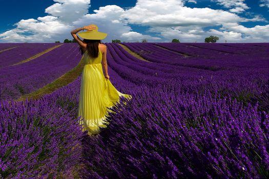 girl, dress, cap, lavender, field, lavandovo pole, ranks, beds, flower beds, sky, clouds, collage, mood, summer, purple, yellow, contrast, flowers