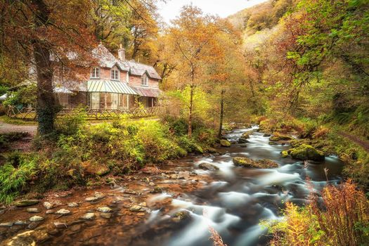 Watersmeet, Autumn, Devon, England, autumn, River, trees, landscape