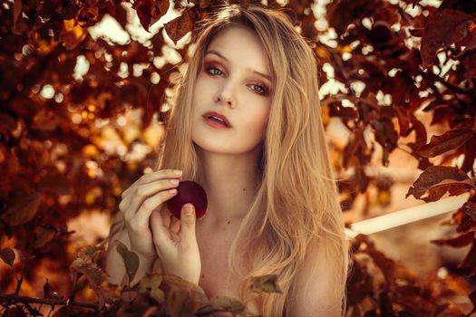 girl, blonde, hair, sight, An Apple, leaves, mood