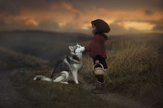 girl, dog, Huskies, friends, friendship, basket, nature