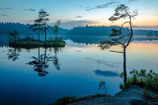 midnight, mirroring water, national park, Sweden, summer, Island, Pine, Coast, fog, landscape