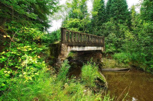 anderson creek bridge, tarbutt township, Ontario, forest, trees, River, bridge, nature