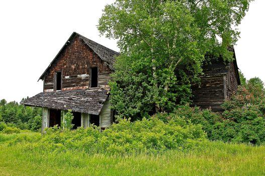 summer, field, house, ruin, trees, landscape