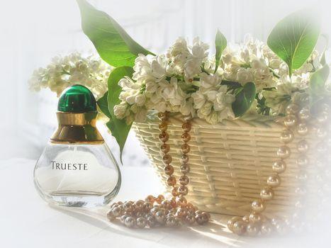 flower composition, flowers, lilac, bead, flora