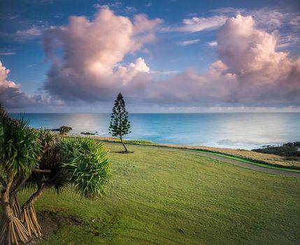Bargara, Queensland, ocean, clouds, grass, palm, Australia