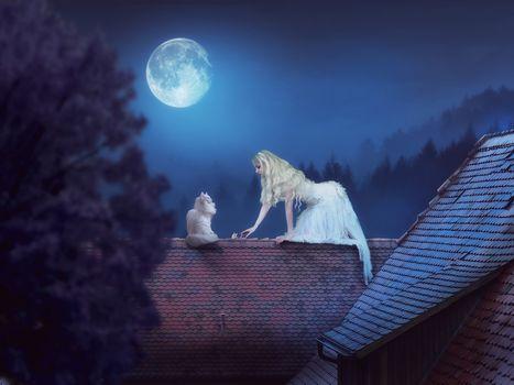 night, girl, cat, fantasy