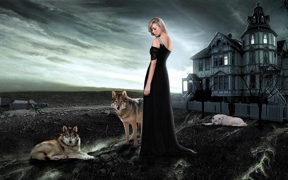 house, girl, wolves, art
