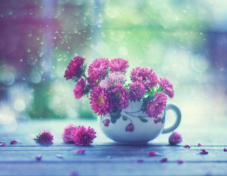 a cup, bouquet, flowers, flora