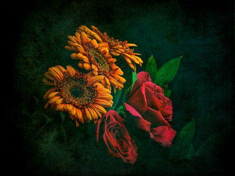 roses, gerberы, flowers, bouquet, flora