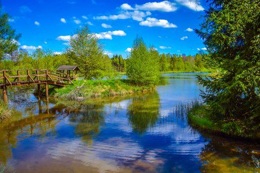 lake, Island, bridge, forest, trees, landscape