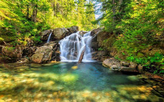 chute d'eau, bois, rock, petite rivière, arbres, nature