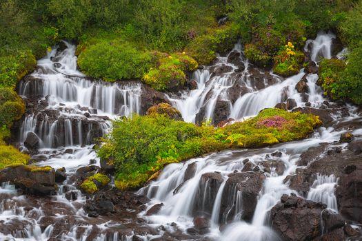Iceland, summer, Xrjojnfossar, wildflowers, River, Lava field, green, Volcanic rocks, waterfall