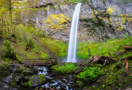 Columbia River Gorge, waterfall, rock, trees, landscape