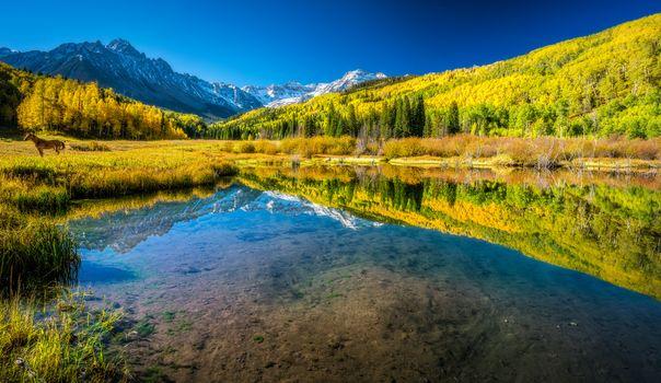 San Juan Mountains, Colorado, autumn, lake, the mountains, trees, forest, landscape