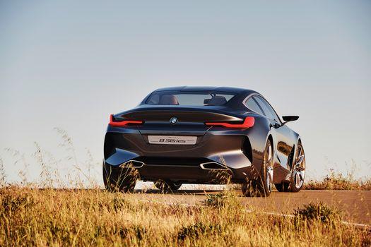 BMW, BMW Série 8 Concept, 2017, BMW, concept car, compartiment, vue arrière, technologie d'éclairage, suivre, végétation, épaule, ciel