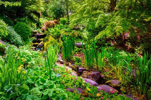 Botanical Garden, park, Creek, trees, plants, landscape