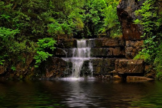 forest, trees, waterfall, rock, water, nature